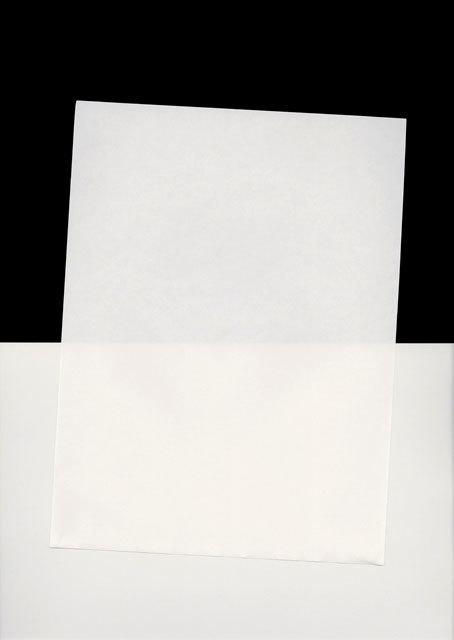 Randy West, 'Feb_2014_34', 2014, Print, Archival pigment print, Craig Krull Gallery